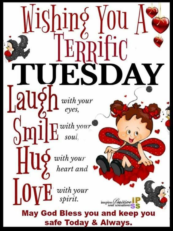 Terrific Tuesday tuesday tuesday images terrific tuesday