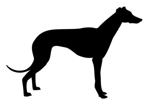 Coloring Page Greyhound Dog Silhouette Grey Hound Dog