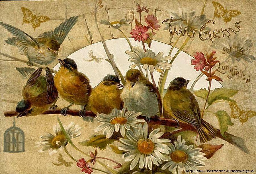 Старинные открытки с животными и цветами