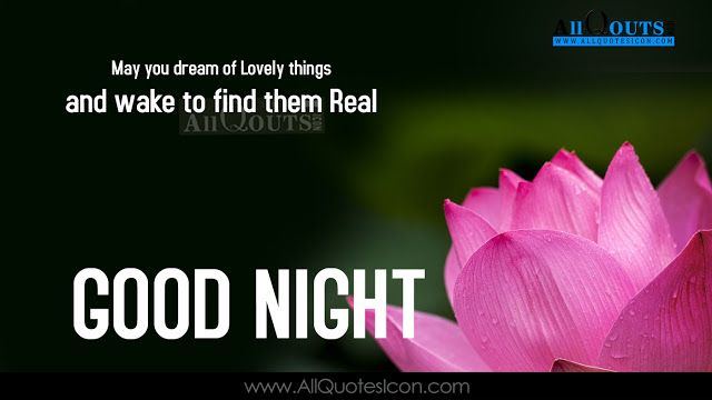 Best Good Night Quotes Wishes HD Wallpapers English Quotes Images  Best Wishes In Life