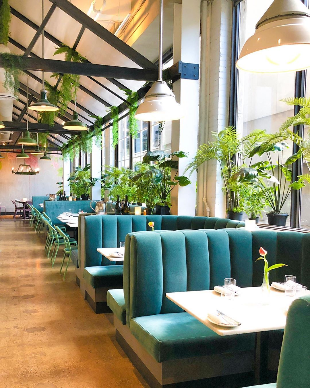 Rosalinda Restaurant Toronto Ontario Vegan Mexican Restaurant Interior Design Hotel Interior Design Restaurant Design