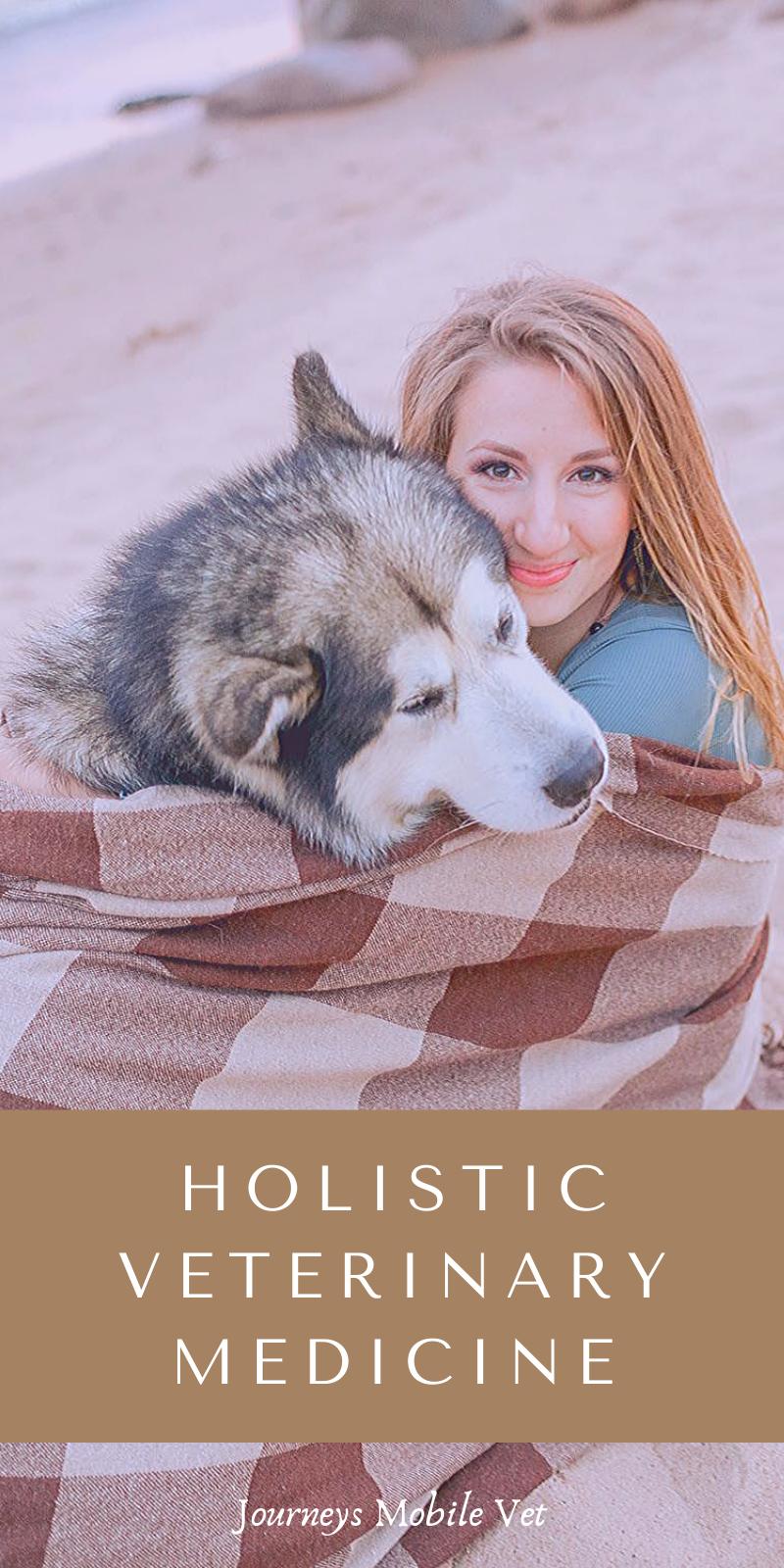 Holistic Veterinary Medicine In 2020 Holistic Veterinary Pets Veterinary Services