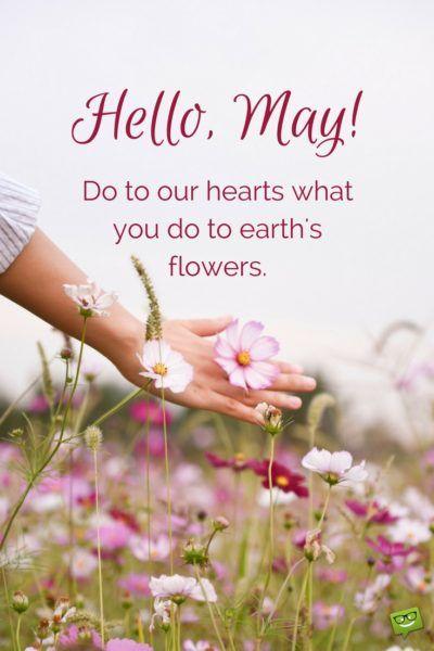 Hello, May Sabbath rest, Sabbath quotes, Happy sabbath
