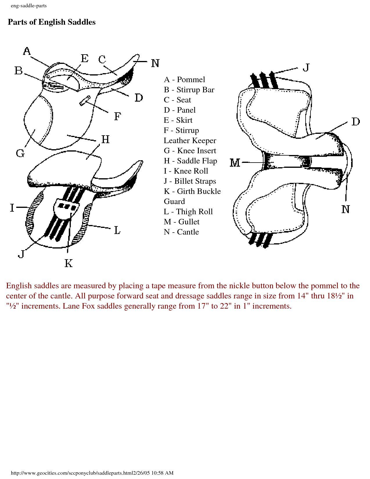 Anatomy of the english saddle horse info pinterest saddles and anatomy of the english saddle ccuart Choice Image