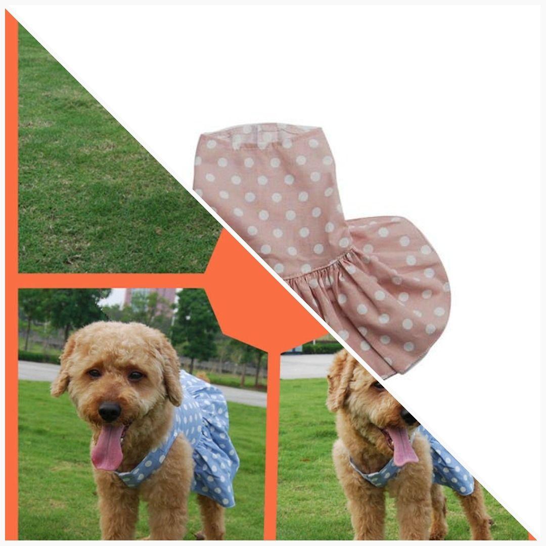 Girly small dog Dress Teddy cockerpoo poodle