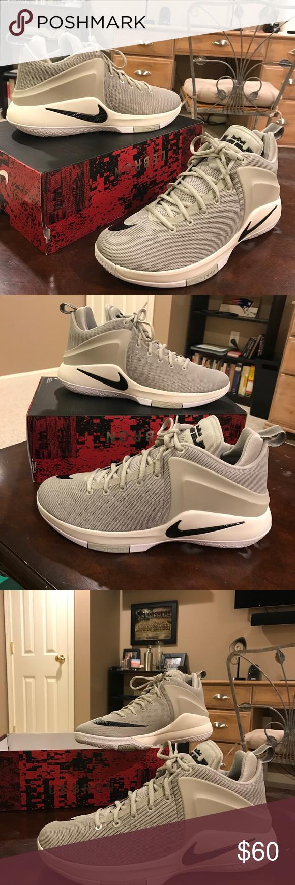 Lebron James Nike Zoom Witness