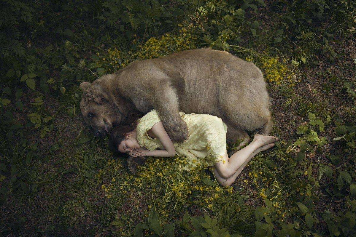 Katerina Plotnikova Wallpaper Animales Buscar Con Google - Russian photographer takes enchanting fairytale photos featuring wild animals