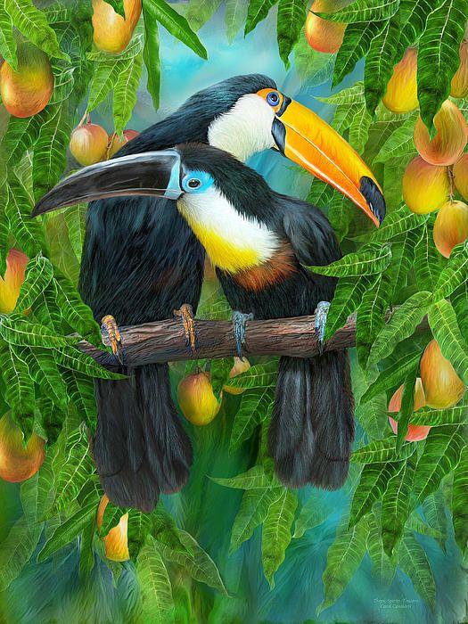 Tropic Spirits Toucans In 2019 Animal Paintings Bird