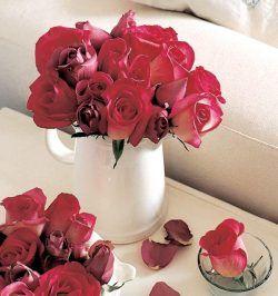 rosas rojas en jarra blanca