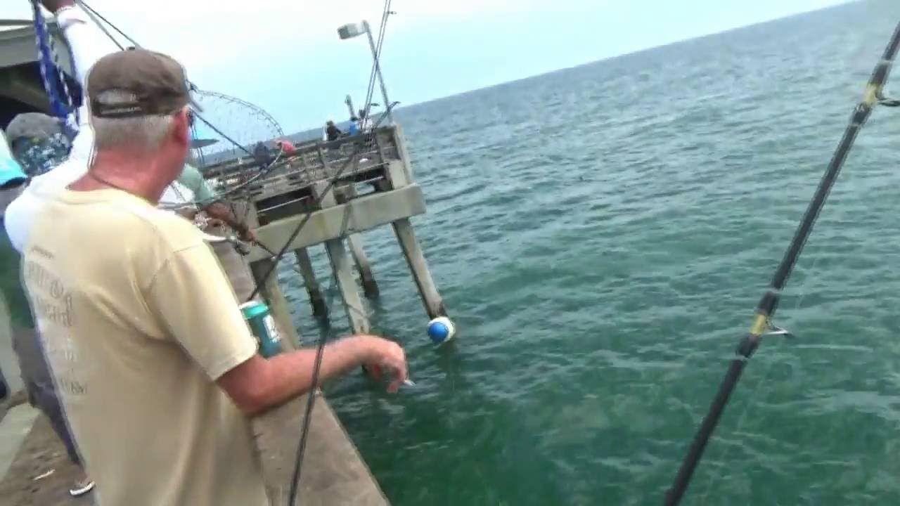 Fishing Uk Dania Beach Pier Fishing Fishing Tips Fishing Tips