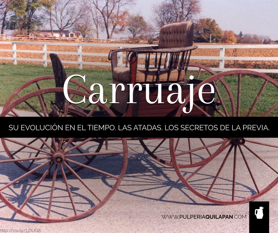 ¿De qué estoy hablando, cuando digo Sulky Lujanero, Spider Phaeton o Dos Carts? #carruajes #argentina http://pulperiaquilapan.com/?p=15877