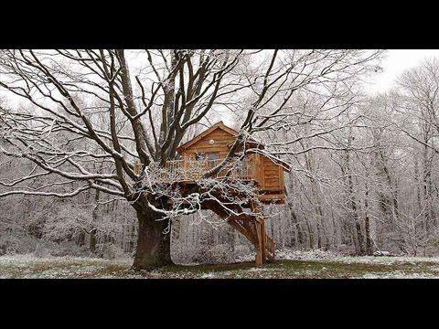 Boys piss treehouse