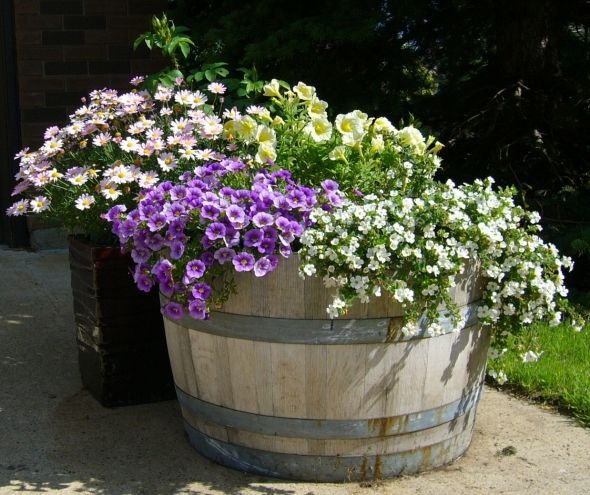 Best Image Of Garden Woodimages Co: The 25+ Best Wine Barrel Planter Ideas On Pinterest