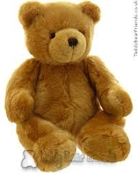 Image result for teddy bear