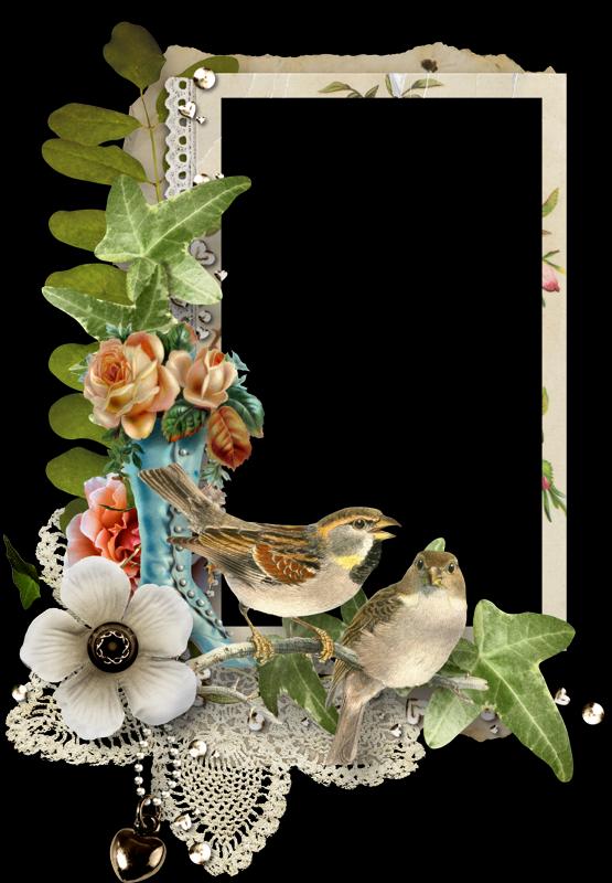 Pin de cecilia perez gomez en fondo pinterest marcos - Marcos para plantas ...