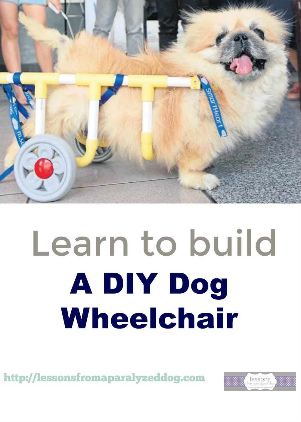 Diy build a dog wheelchair pinterest dog wheelchair dog and pet learn to build a sturdy inexpensive diy dog wheelchair solutioingenieria Gallery