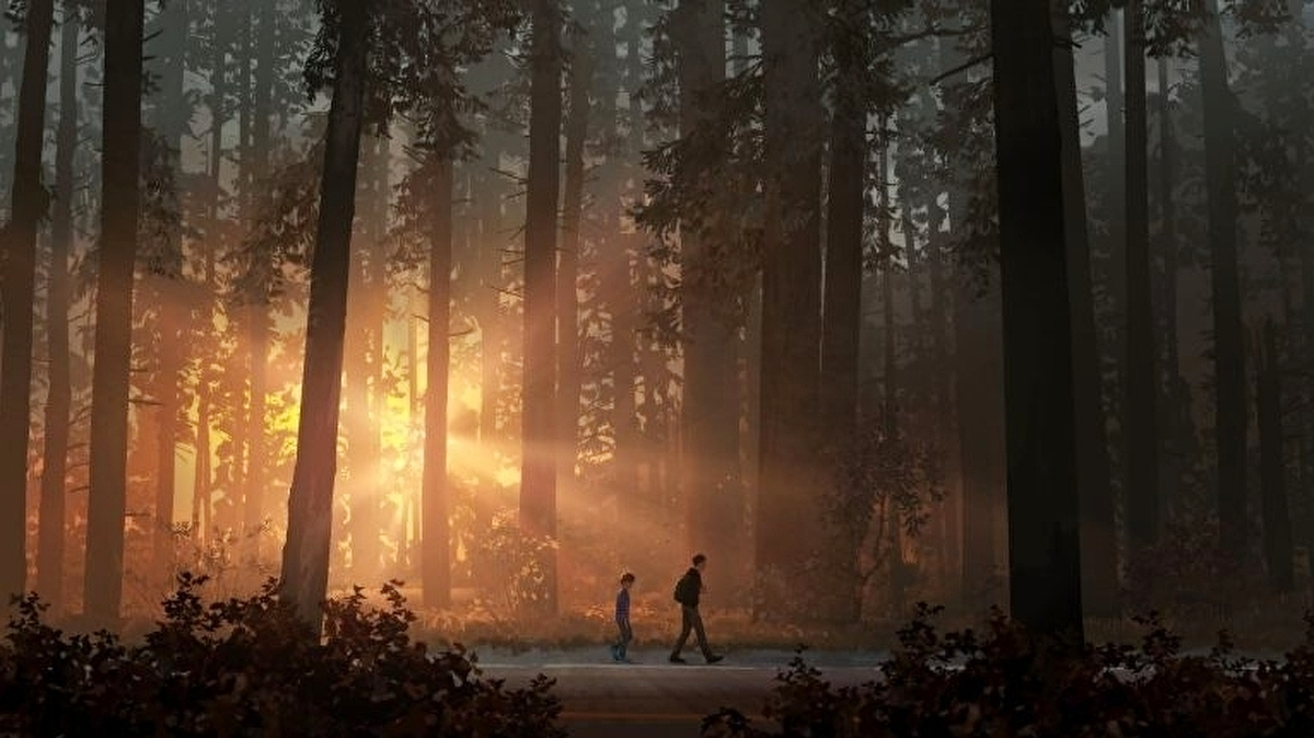 Episode 5 Of Life Is Strange 2 Is Almost Ready Life Is Strange Wallpaper Life Is Strange Life Art