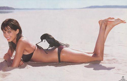 Phrase Petra nemcova bikini crow