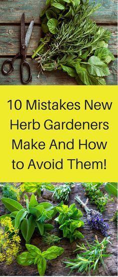 10 Mistakes New Herb Gardeners Make And How to Avoid Them! #kräutergartendesign
