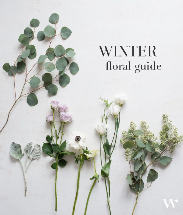 Photo of The Seasonal Flower Guide Series: Winter Florals