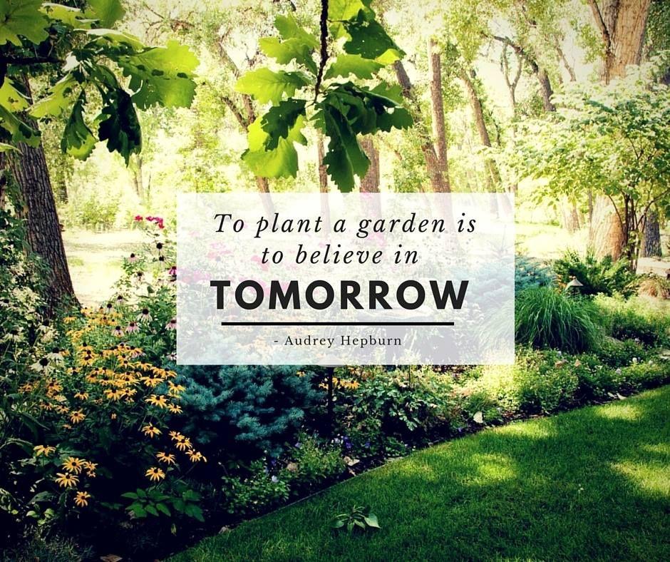 Audrey Hepburn Garden Quote Gardening Quotes Garden Quotes