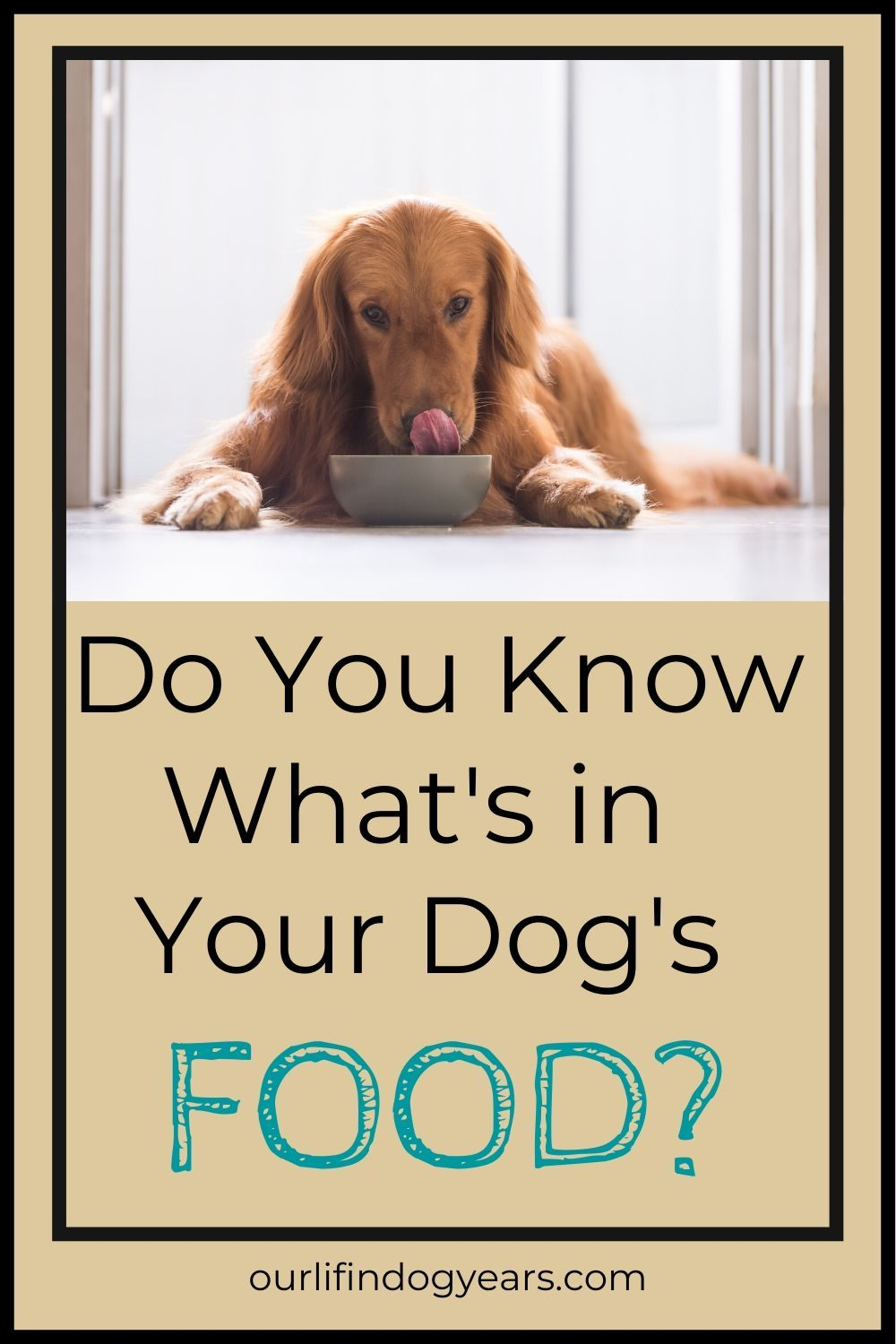 Commercial Pet Food What You Should Know In 2020 With Images