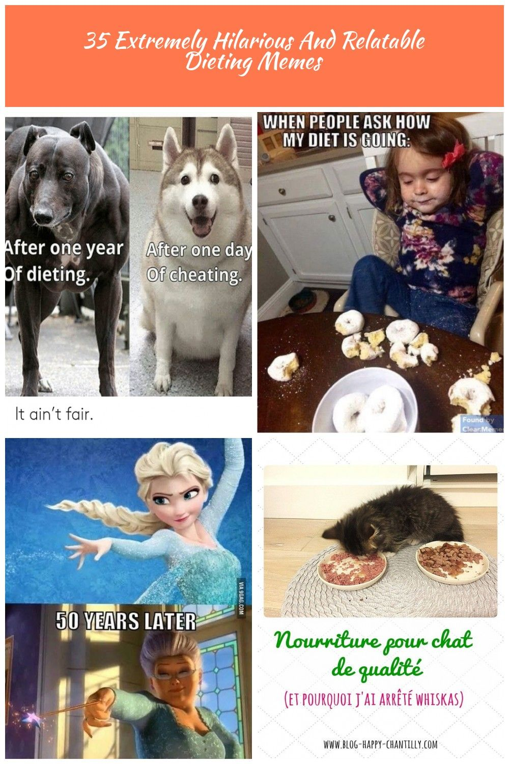 35 Extremely Hilarious And Relatable Dieting Memes Lively Pals Diet Meme 35 Extremely Hilarious And Relatable Dieting Memes Diet Meme Hilarious Memes