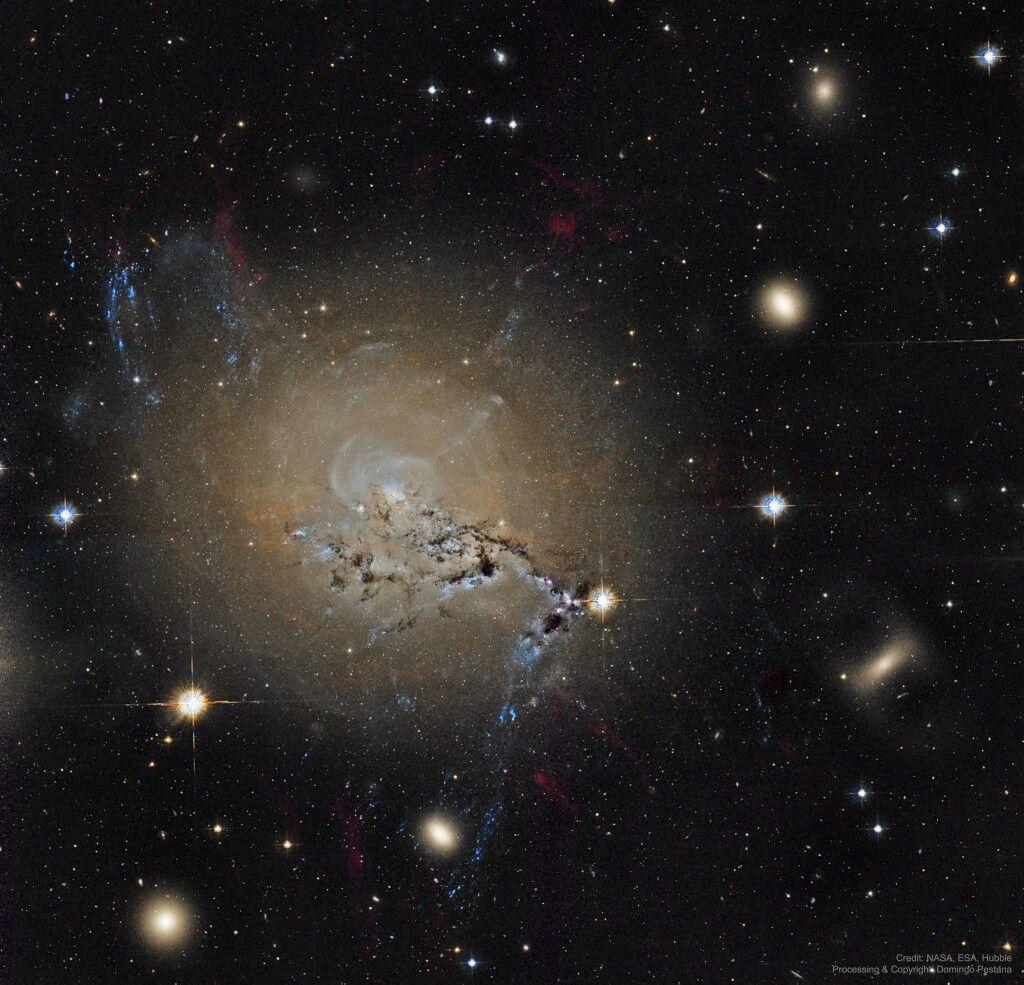 Filaments Of Active Galaxy Ngc 1275 Image Credit Hubble Legacy Archive Esa Nasa Processing Copyright Domi Galaxy Ngc Hubble Space Telescope Hubble Images