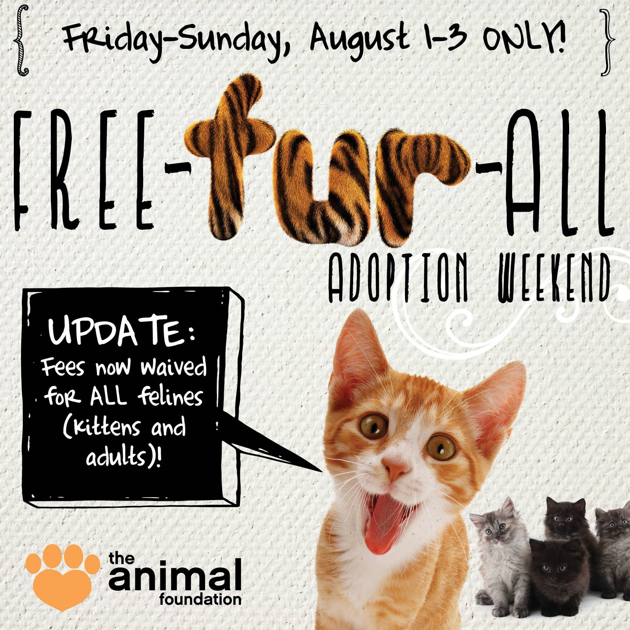 8/1/14 UPDATE — Adoption fees now waived for ALL cats