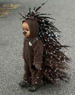 Porcupine Costume & Porcupine Costume   KIDS KOSTUMES   Pinterest   Costumes Halloween ...