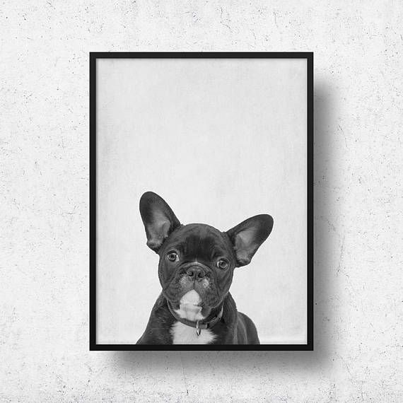 Printable Frenchie Wall Art French Bulldog Nursery Decor Kids Room Decor Dog Poster Nordic Print Design Minimal Animal Monochrome Art Nursery Animal Prints Dog Wall Art Dog Lovers Art