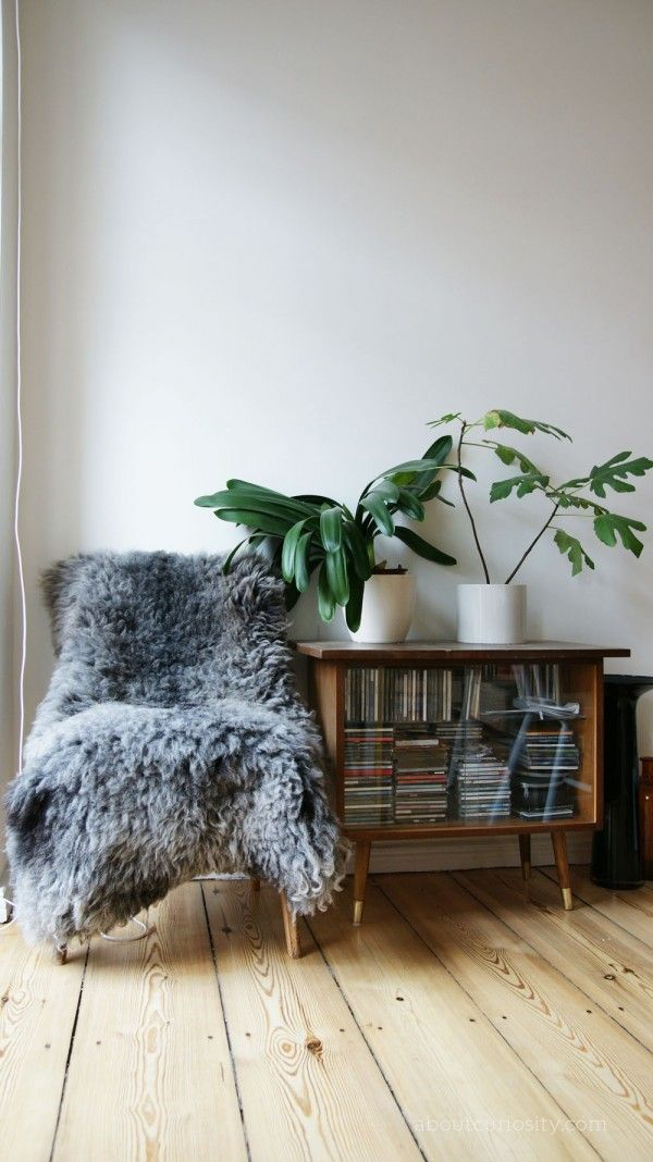 Lækker indretning med retro planter