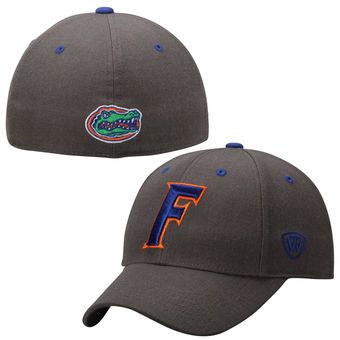 newest collection 55f83 7a15d Mens Florida Gators Top of the World Charcoal Dynasty Memory Fit Fitted Hat