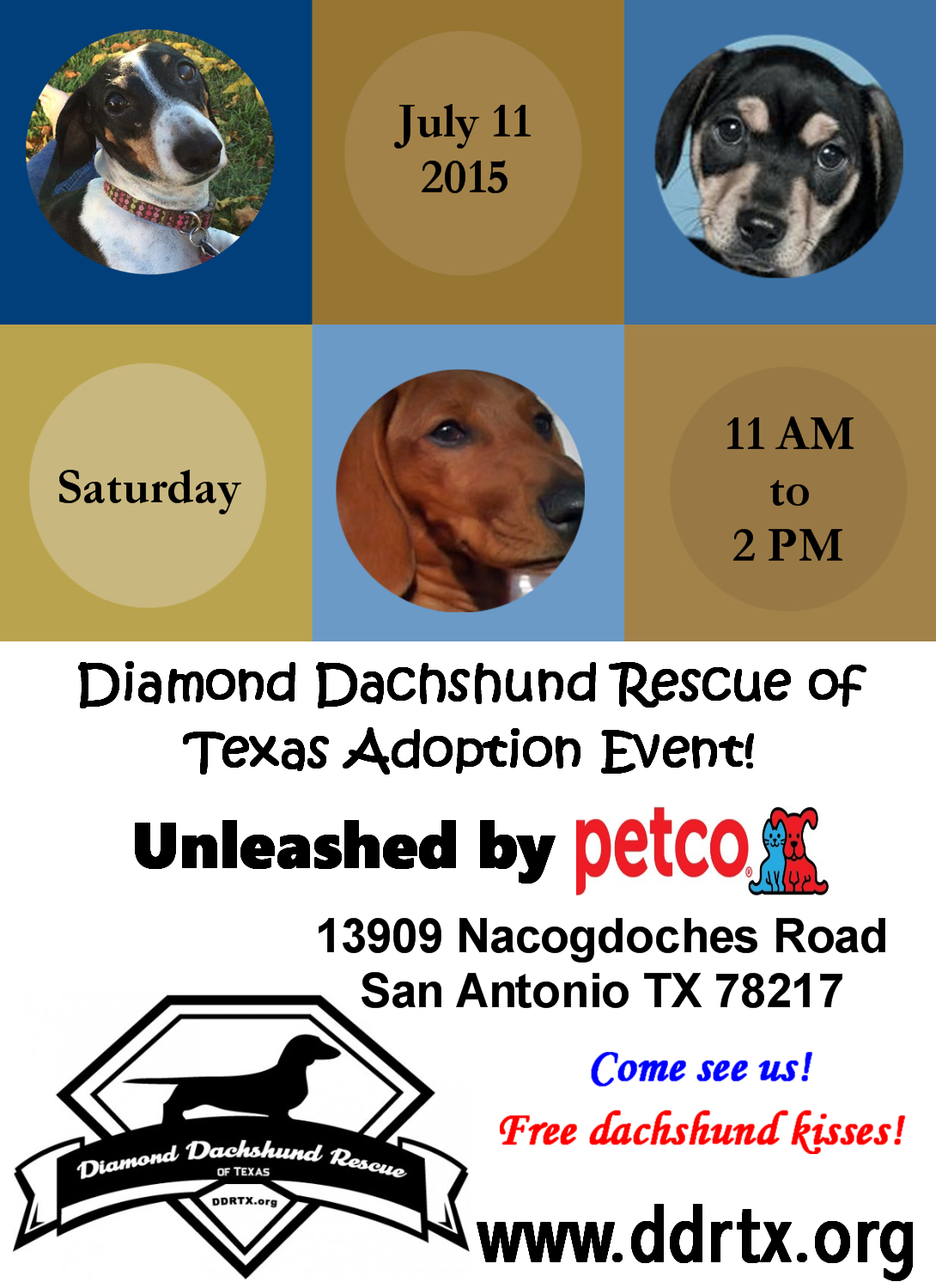 Diamond Dachshund Rescue Of Texas Adoption Event Unleashed By Petco Saturday July 11th 2015 11 00 Am Until 02 00 Pm Petco 13 Petco Dachshund Rescue Adoption