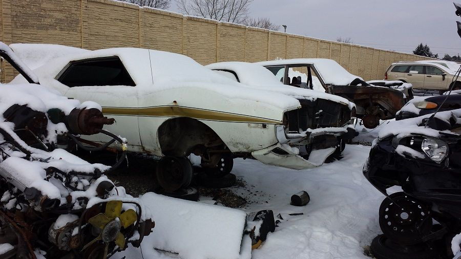 AMC Javlin rotting in a yard-http://mrimpalasautoparts.com