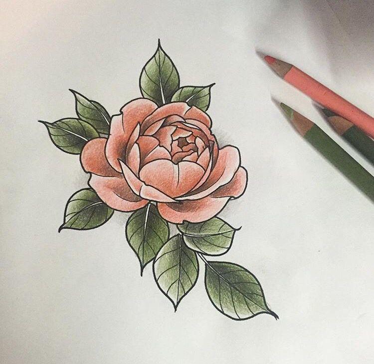 Jes Ashby S Work 3 Hibiscus Flower Tattoos Rose Tattoos English Rose Tattoos