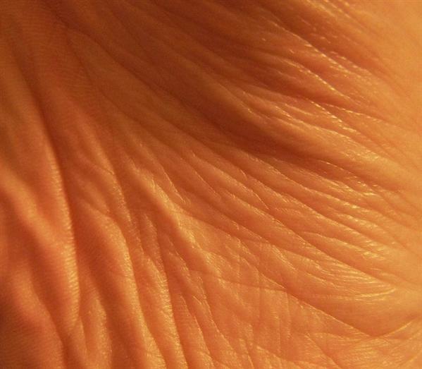 Over 50 Skin Textures Free Download Skin Textures Human Skin Texture Photoshop Resources