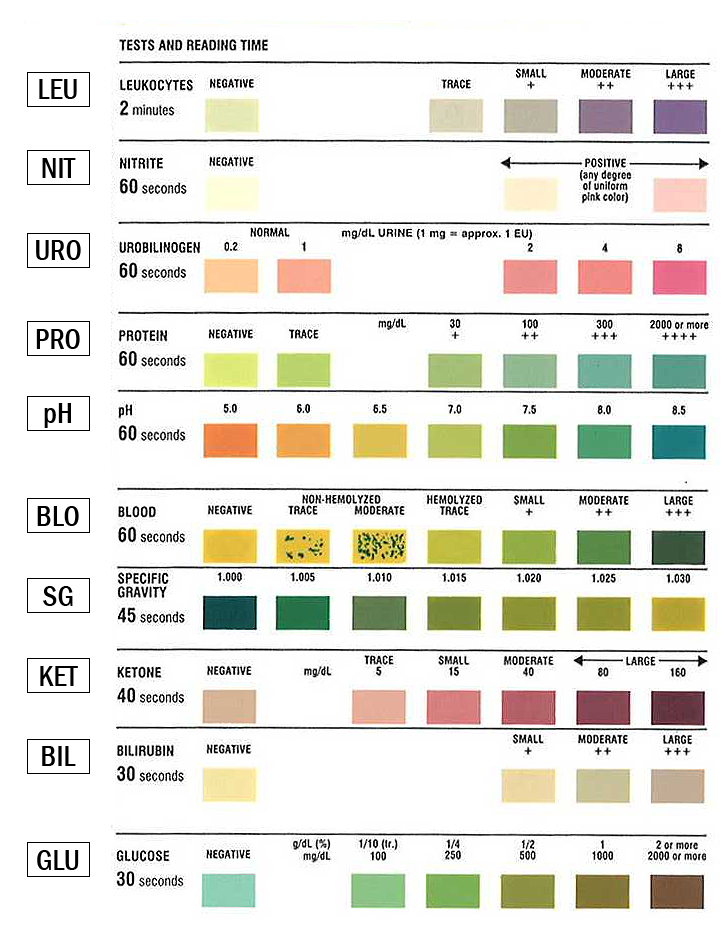 Urinalysis Test Strip Color Chart | learn.parallax.com | Health ...