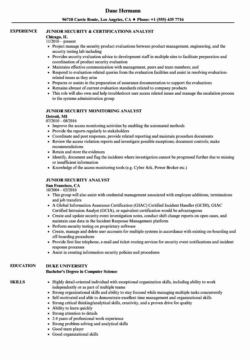 Cyber Security Entry Level Resume Fresh Junior Security Analyst Resume Samples Marketing Perasaan