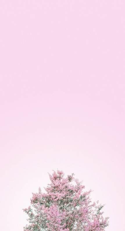21 Trendy Flowers Background Desktop Mobiles