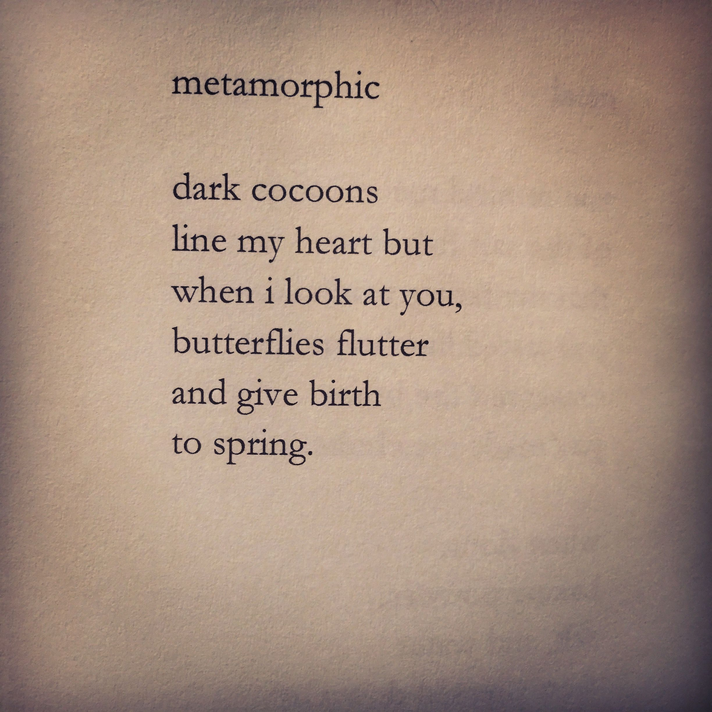 Ky Robinson The Chaos Of Longing Metamorphic Love Poetry