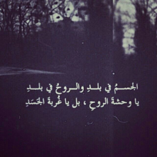 Pin by احمد إياد on اصدق حب❤ | Arabic english quotes