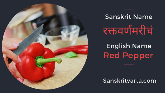 Vegetables Names In Sanskrit & Hindi With Pictures