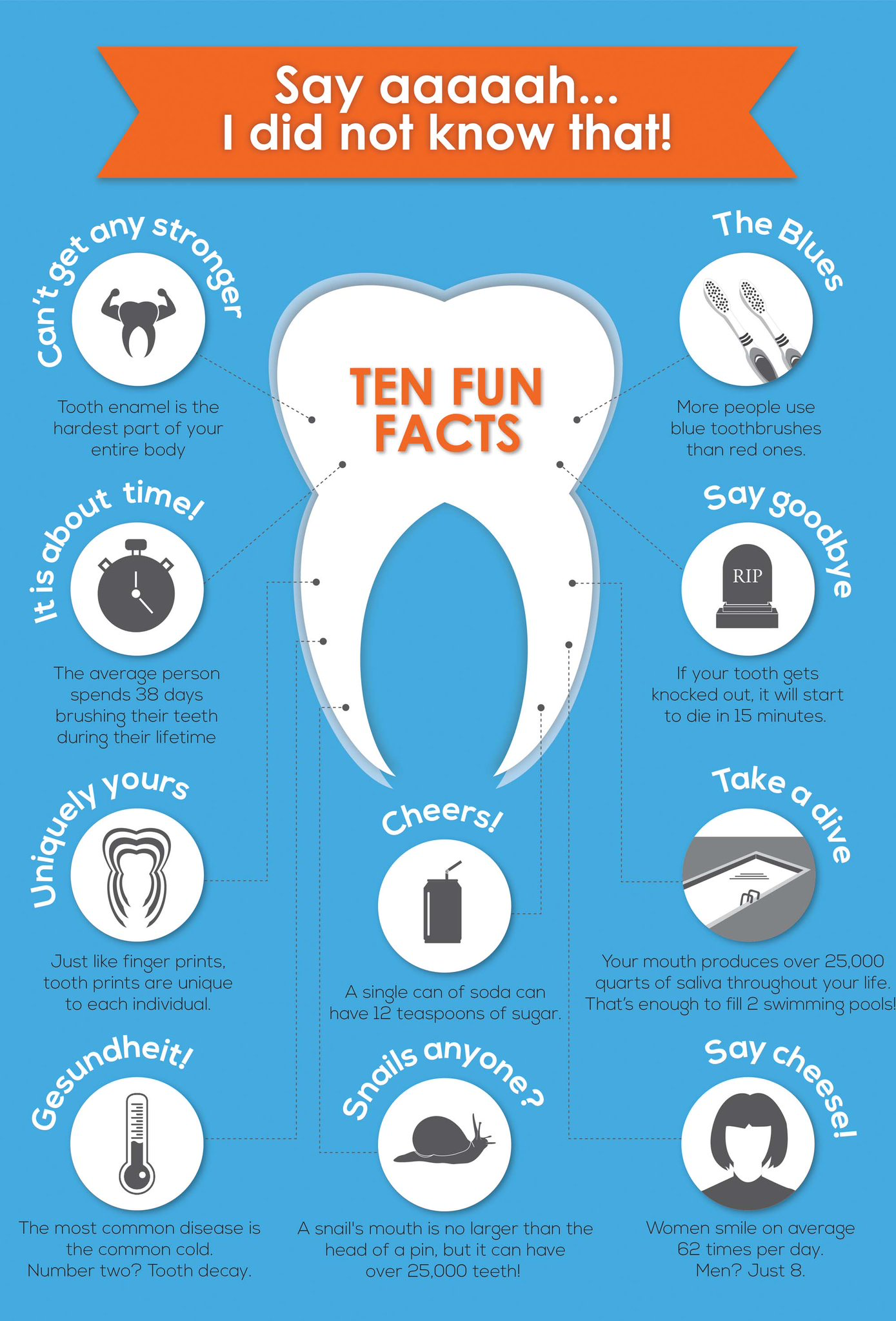 dentistry #dental | Patient education | Dental fun facts