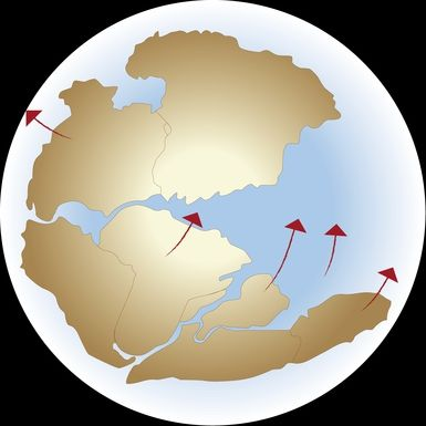 Learn About Pangea, the Landmass that Covered One-Third of the Planet