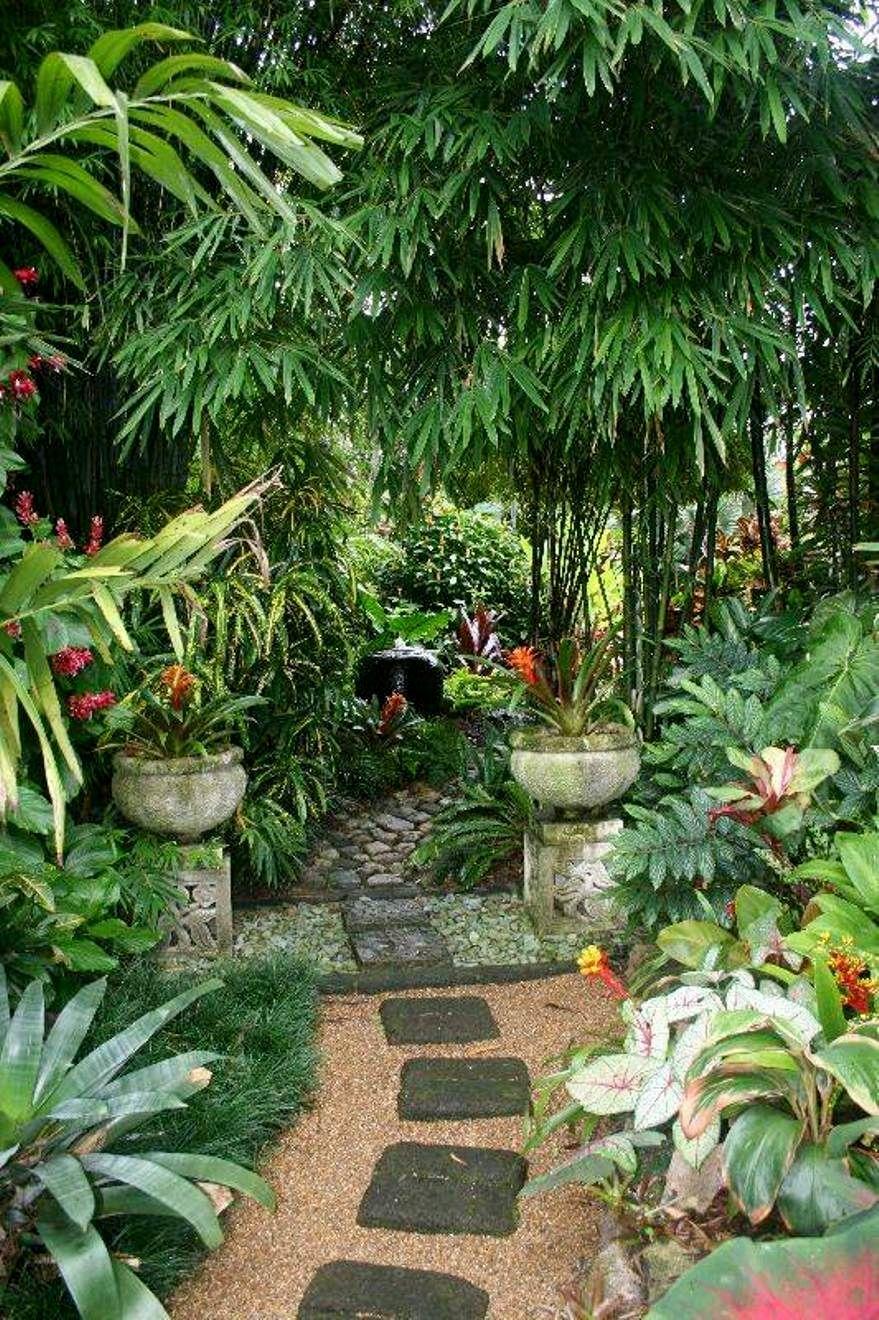 Pin By K E V I N K I N G On Beautiful Gardens Tropical Garden Design Balinese Garden Tropical Backyard