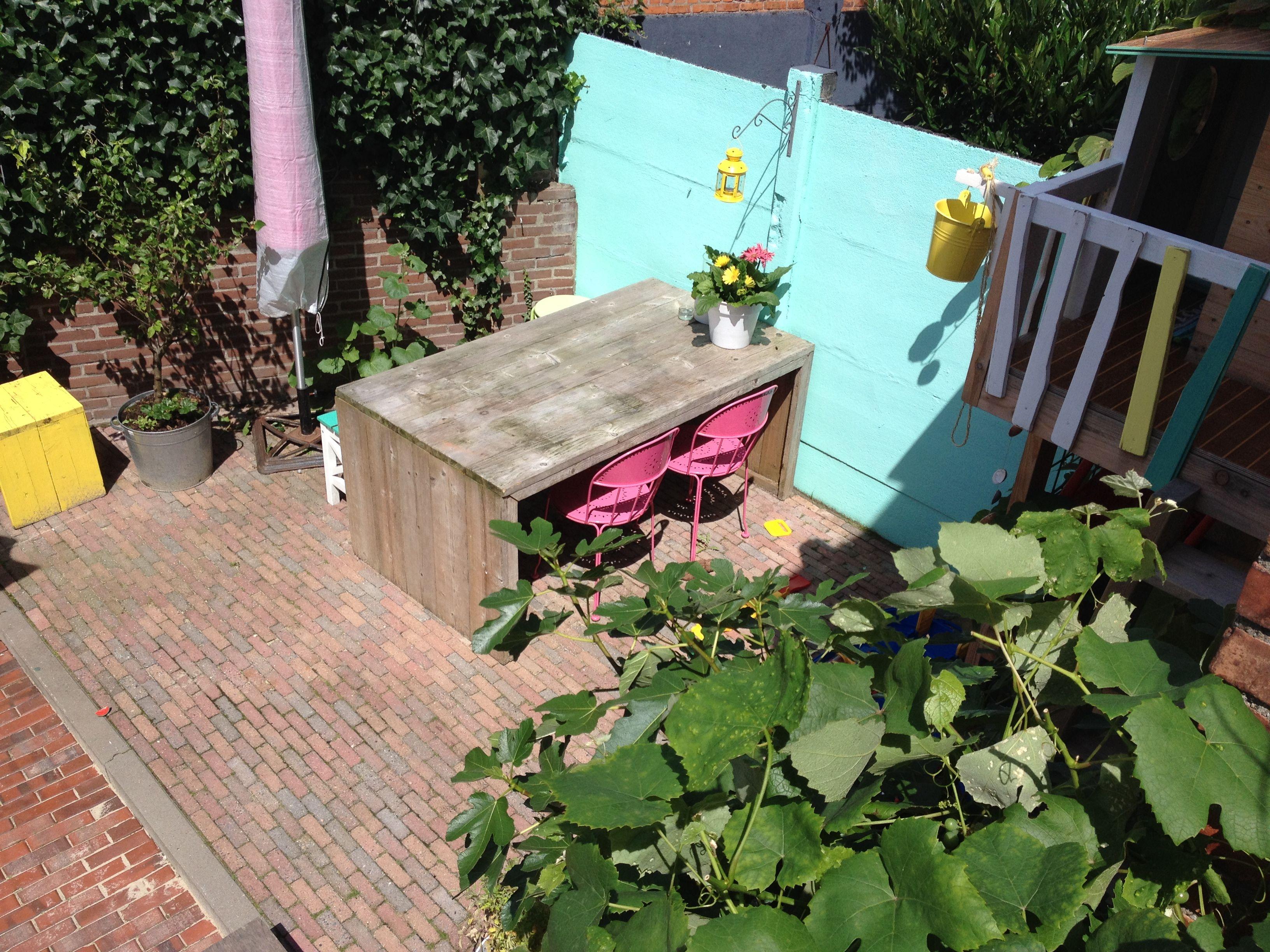 Outdoor #smallgarden #colors