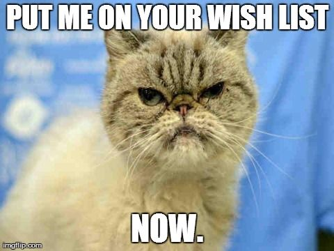 Voldi Would Love To Be On Your Wish List Stop By Animal Welfare League Of Alexandria To See This Adorab Animal Welfare League Cat Memes Grumpy Cat