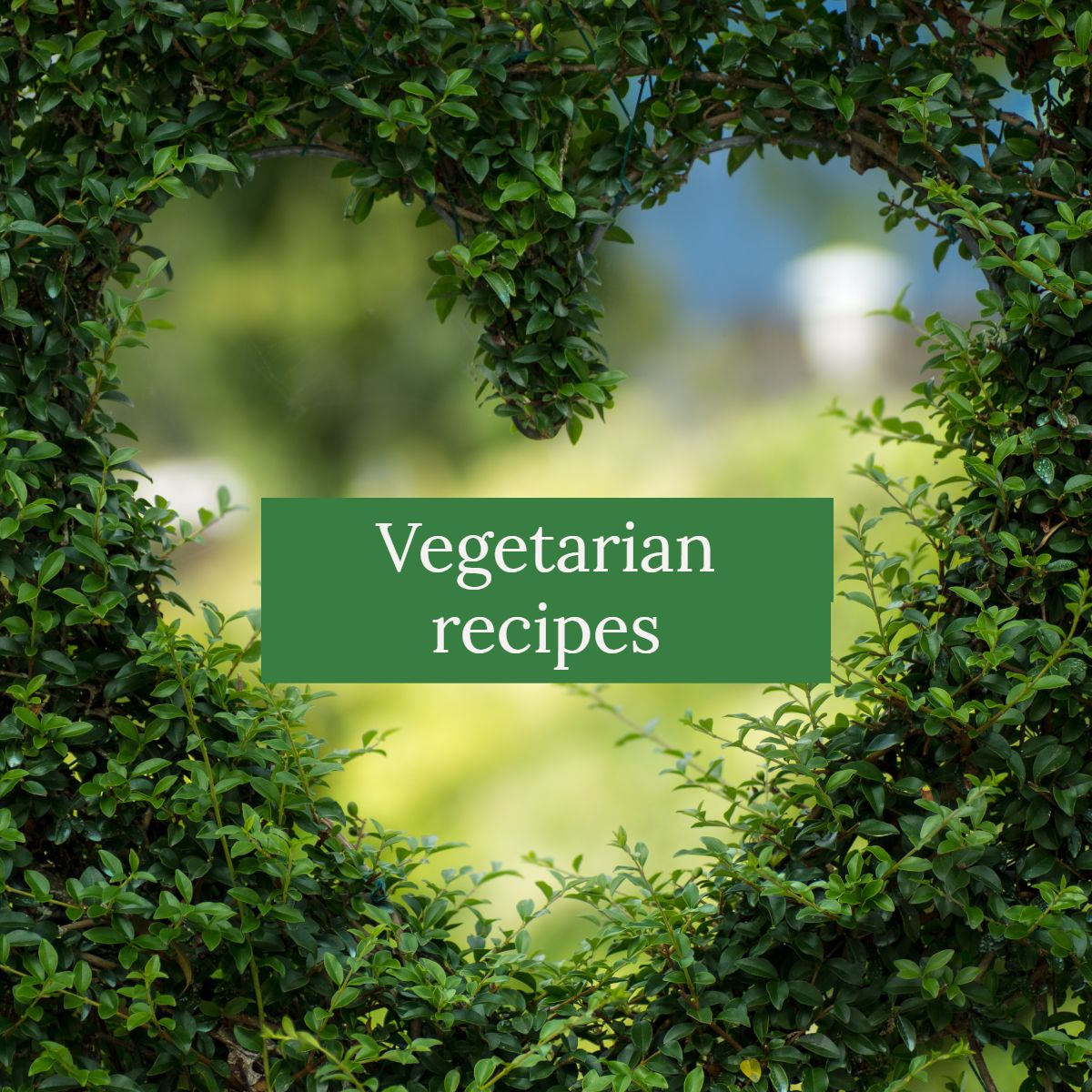 Pin By Empathitive On Vegetarian Recipes In
