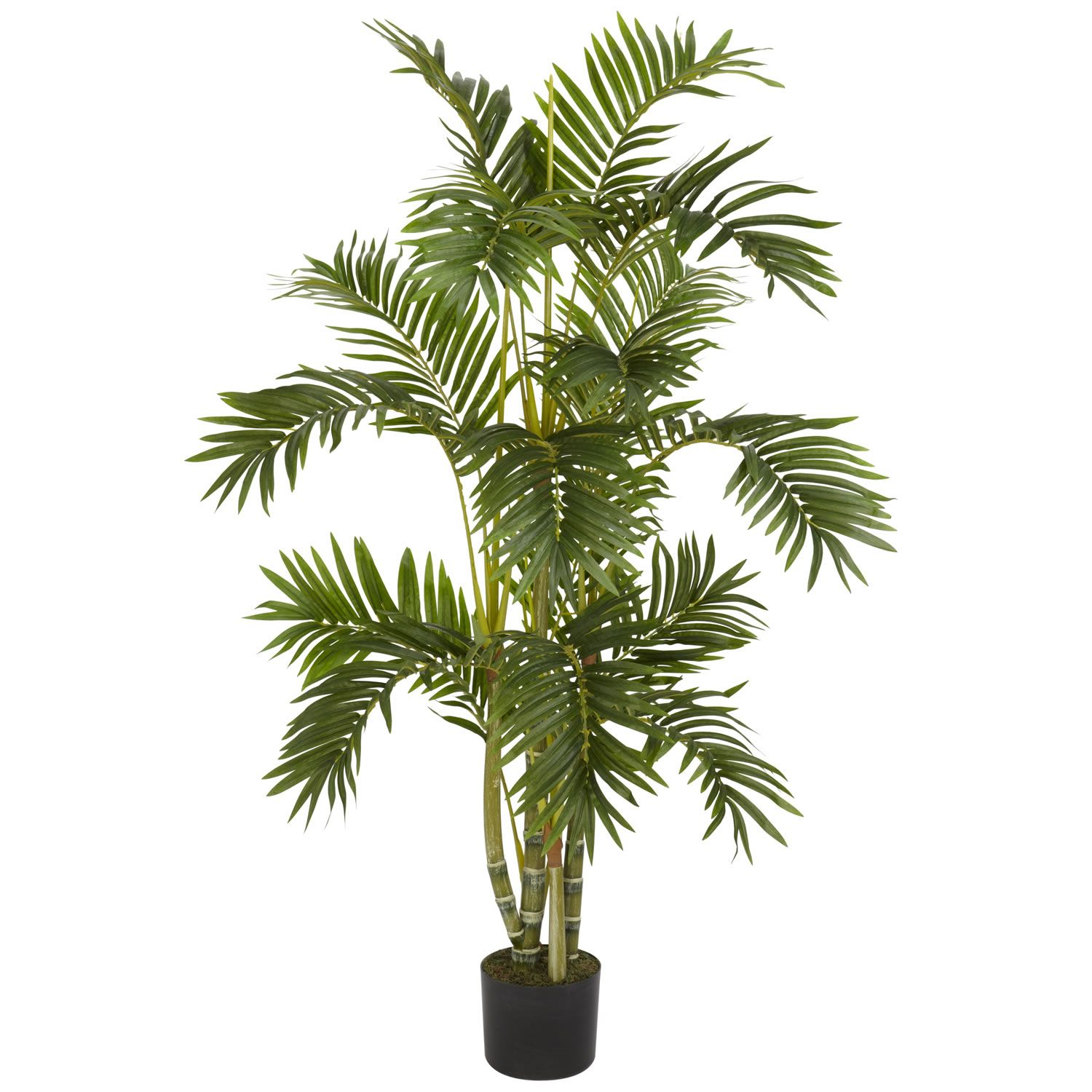 4 foot Areca Palm Tree: Potted | Silk tree and Apartments